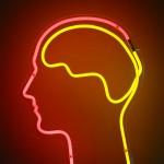 2012 - neon brain