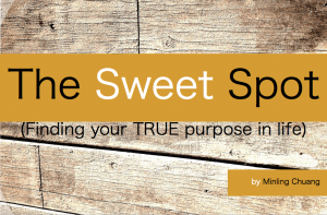 E Book - The Sweet Spot Cover